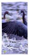Heron Encounter - Battle - Fight Beach Towel