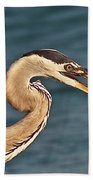 Heron With Catch Beach Towel