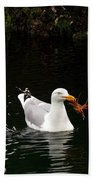 Herring Gull With Crab Beach Towel