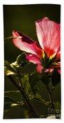 Hibiscus 03 Beach Towel