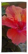 Hibiscus 2 Beach Towel