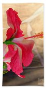 Hibiscus Along The Walk Way Beach Towel