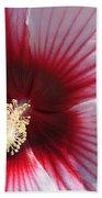 Hibiscus-callaway Gardens Beach Towel