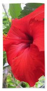 Hibiscus Red Beach Towel