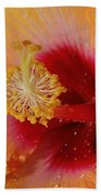 Hibiscus Stamen IIi Beach Towel