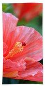 Hibiscus Summer Beach Towel