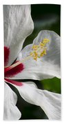 Hibiscus White Wings Beach Towel