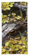 Hiding Alligator Beach Towel