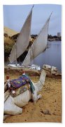 High Angle View Of A Camel Resting Beach Towel