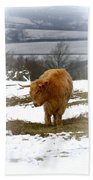 Highland Cow Beach Towel