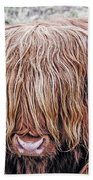 Highlands Coo Beach Towel