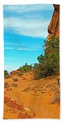 Hiking Between Massive Needles In Needles District Of Canyonlands National Park-utah Beach Towel