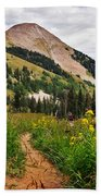 Hiking In La Sal Beach Towel