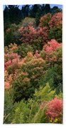 Hill Side Colors Beach Towel