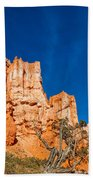 Hillside Carvings Beach Towel