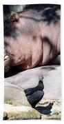 Hippo And Friend Beach Towel