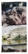 Hippo At Leisure Beach Towel