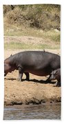 Hippo Mum And Calf Beach Towel