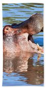 Hippo With Open Mouth In River. Serengeti. Tanzania Beach Towel