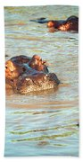 Hippopotamus Group In River. Serengeti. Tanzania Beach Towel