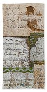 History Of Hill Ward Asylum Beach Towel
