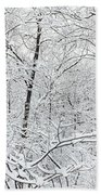 Hoar Frost Covered Trees In Forest Beach Towel