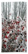 Hoarfrost 25 Beach Towel