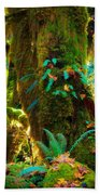Hoh Grove Beach Towel