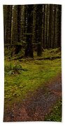 Hoh Rainforest Road Beach Towel