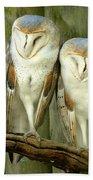 Homosassa Springs Snowy Owls 2 Beach Towel
