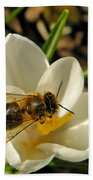 Honey Bee And Crocus Beach Towel
