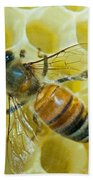 Honey Bee In Hive Beach Towel