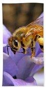 Honeybee On Hyacinth Beach Towel