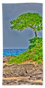 Honolulu Hi 7 Beach Towel