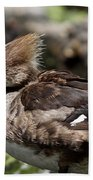 Hooded Merganser Female Beach Towel