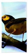 Hooded Warbler - Img 9290-002 Beach Towel