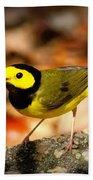 Hooded Warbler - Img 9352-003 Beach Towel