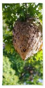 Hornets Nest Beach Towel