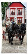 Horse And Buggy Sc3643-13 Beach Towel
