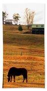 Horse And Farm By Jan Marvin Beach Towel