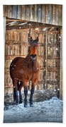 Horse And Snow Storm Beach Towel
