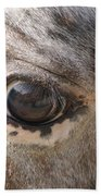 Horse Close Up Beach Towel