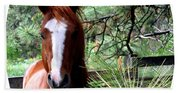 Horse Country Beach Towel