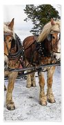 Horse Drawn Sleigh Beach Towel by Edward Fielding