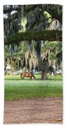 Horse Feeding Under Live Oak Beach Towel