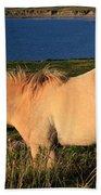 Horse In Wildflower Landscape Beach Towel