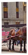 Horse Needs Water In Old Montreal-quebec-canada Beach Towel