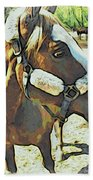 Horse Point Of View Beach Towel