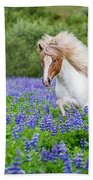 Horse Running By Lupines. Purebred Beach Towel