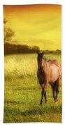 Horses At Sunset Beach Towel